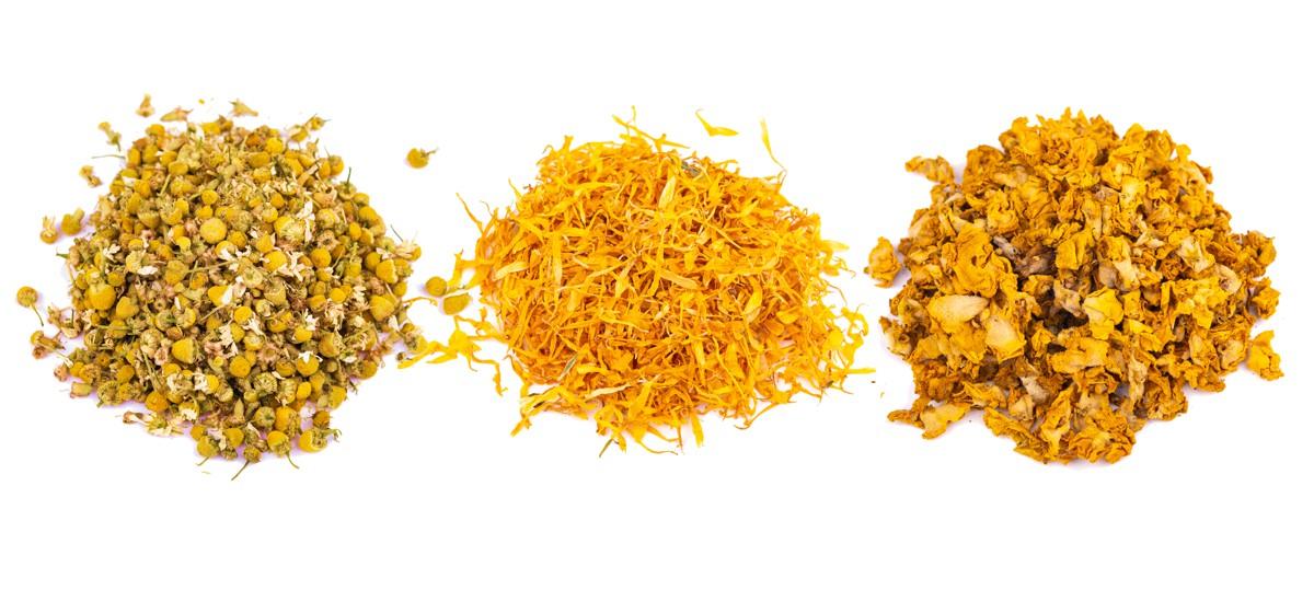 Teekräuter_gelb